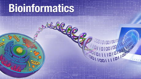Bioinformatics: Introduction and Methods 生物信息学: 导论与方法