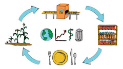 Sustainability of Food Systems: A Global Life Cycle Perspective